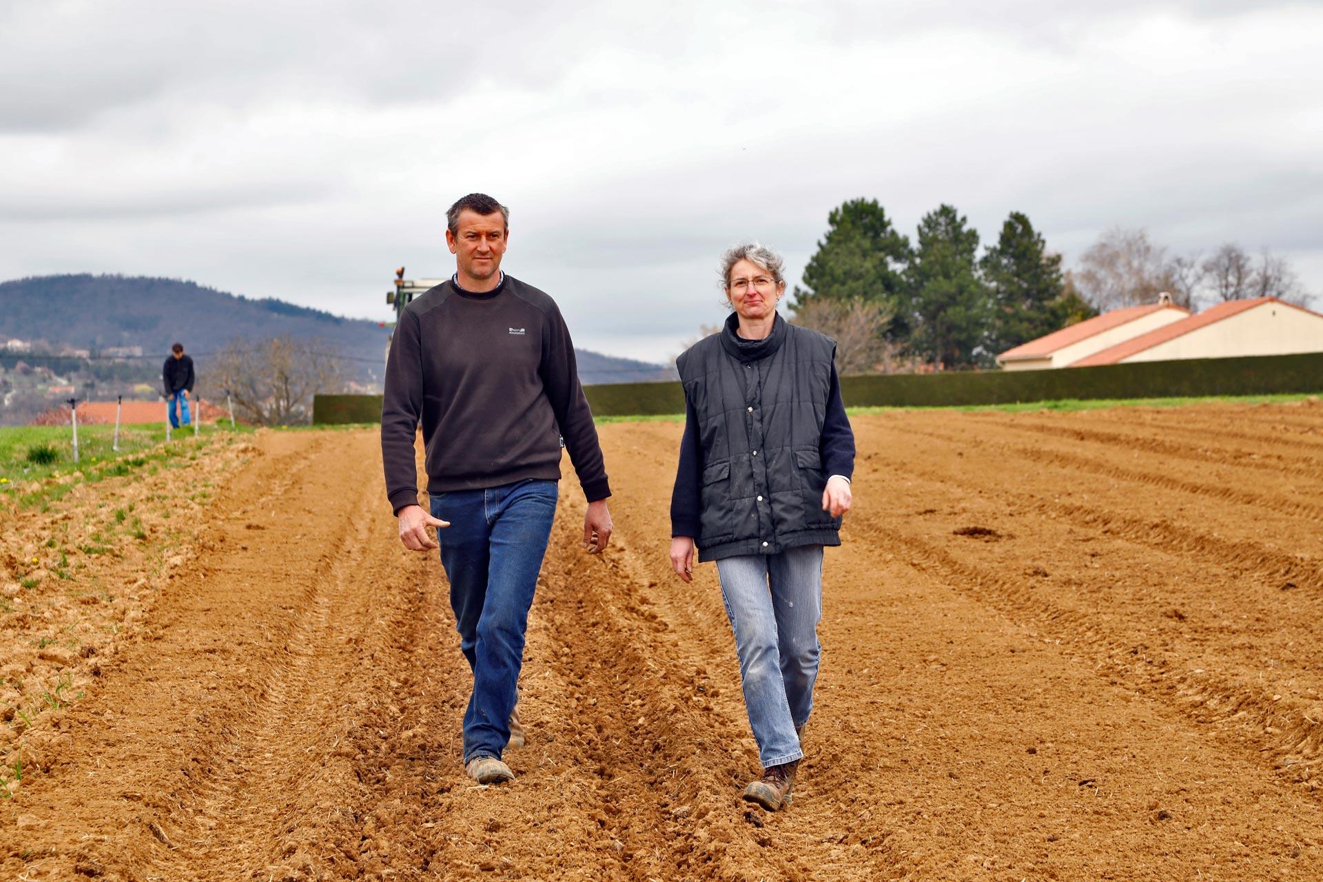 Les Délices du Maraicher Soupes Conserves Veloutés Sauces Bio AB Agriculuture Biologique